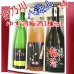【母の日敬老の日ギフト】梅酒ゆず種3本ギフトセット 八海山・吉乃川・侍(720mlと500ml)ゆず酒梅酒好きには人気トリオ
