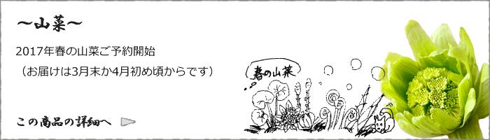 bnr_sansai01