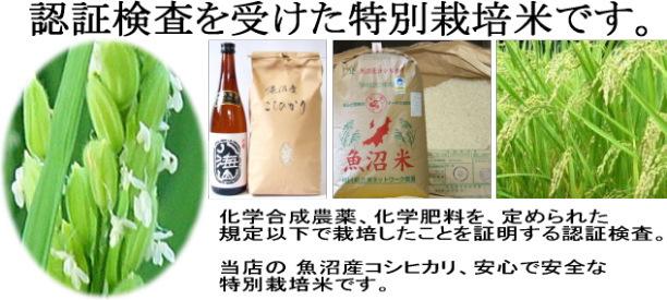 kome_tokusai_top_img
